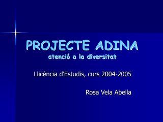 PROJECTE ADINA atenci  a la diversitat