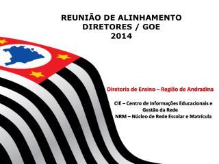 REUNIÃO DE ALINHAMENTO DIRETORES / GOE 2014