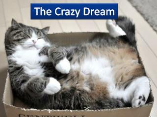 The Crazy Dream