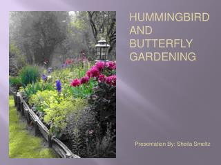 HUMMINGBIRD AND BUTTERFLY GARDENING