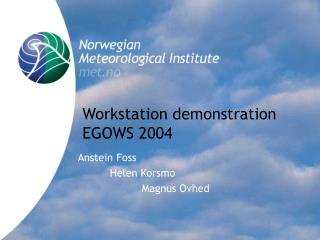 Workstation demonstration EGOWS 2004