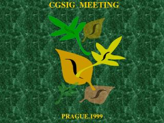 CGSIG  MEETING