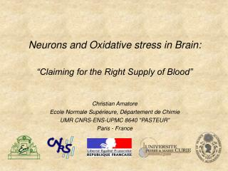 "Neurons and Oxidative stress in Brain: ""Claiming for the Right Supply of Blood"""