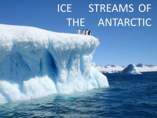 ICE 	STREAMS	 OF                 THE 	ANTARCTIC