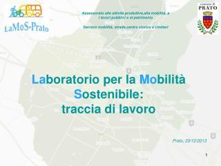 La boratorio per la  Mo bilità  S ostenibile:  traccia di lavoro