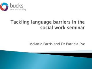Tackling language barriers in the social work seminar