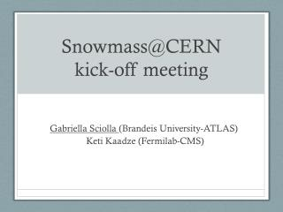 Snowmass@CERN  kick-off meeting