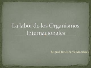 La labor de los Organismos Internacionales