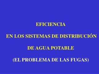 EFICIENCIA  EN LOS SISTEMAS DE DISTRIBUCIÓN DE AGUA POTABLE (EL PROBLEMA DE LAS FUGAS)