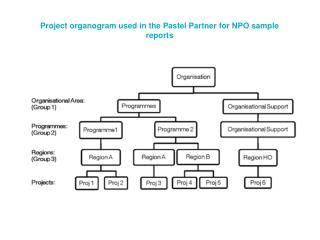 Project organogram used in the Pastel Partner for NPO sample reports