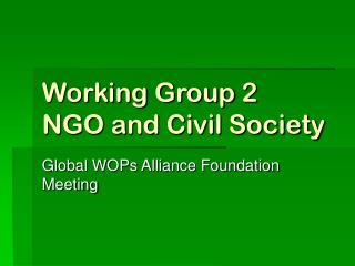 Working Group 2 NGO and Civil Society