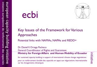 Key Issues of the Framework for Various Approaches  Potential links with NAMAs, NAPAs and REDD+
