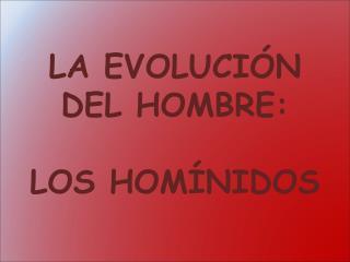 LA EVOLUCIÓN DEL HOMBRE:  LOS HOMÍNIDOS