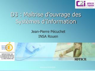 D3: Maîtrise d'ouvrage des Systèmes d'Information