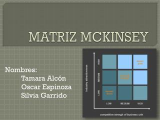 MATRIZ MCKINSEY
