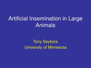 Artificial Insemination in Large Animals
