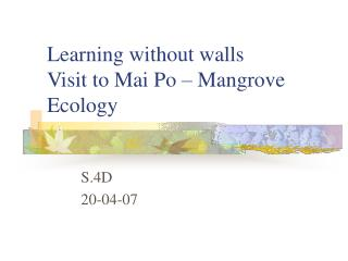 Learning without walls Visit to Mai Po – Mangrove Ecology