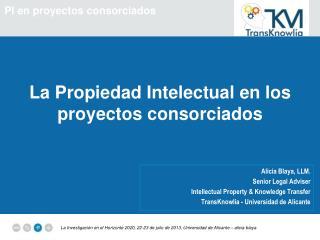 La Propiedad Intelectual en los proyectos consorciados