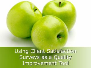 Using Client Satisfaction Surveys as a Quality Improvement Tool