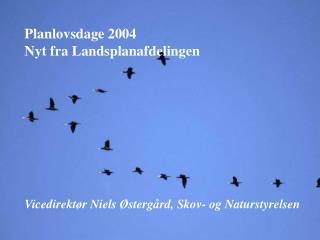 Planlovsdage 2004 Nyt fra Landsplanafdelingen