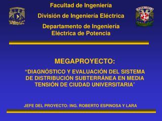 Facultad de Ingenier�a Divisi�n de Ingenier�a El�ctrica