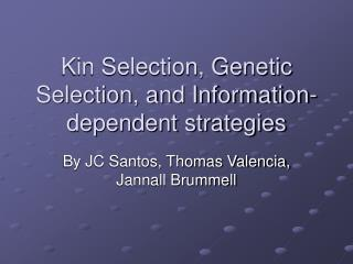 Kin Selection, Genetic Selection, and Information-dependent strategies