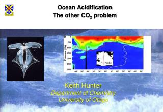 Ocean Acidification The other CO 2  problem