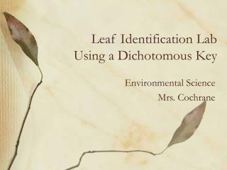 Leaf Identification Lab Using a Dichotomous Key