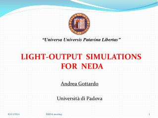 LIGHT-OUTPUT  SIMULATIONS FOR  NEDA  Andrea Gottardo Università di Padova