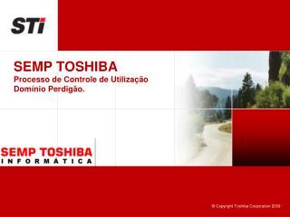 SEMP TOSHIBA Processo de Controle de Utilização Domínio Perdigão.