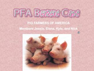 PIG FARMERS OF AMERICA Members Jessie, Elena, Kyle, and Nick