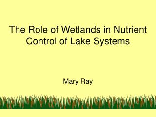 The Role of Wetlands in Nutrient Control of Lake Systems
