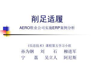 削足适履 AERO 鞋业公司实施 ERP 案例分析