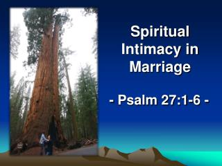 Spiritual Intimacy in Marriage
