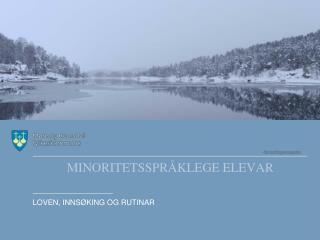 MINORITETSSPRÅKLEGE ELEVAR