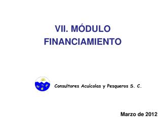 VII. MÓDULO  FINANCIAMIENTO