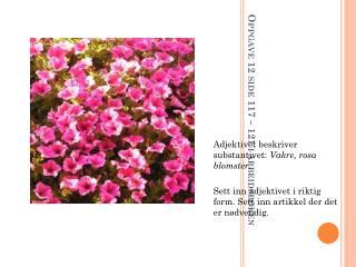 Oppgave 12 side 117 – 121 i arbeidsboken