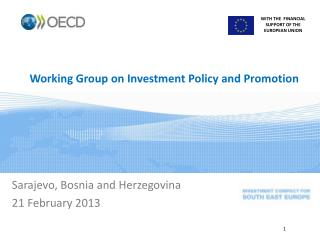 Working Group on Investment Policy and Promotion