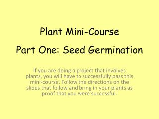 Part One: Seed Germination