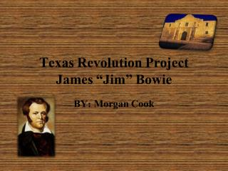 "Texas  R evolution Project James ""Jim"" Bowie"