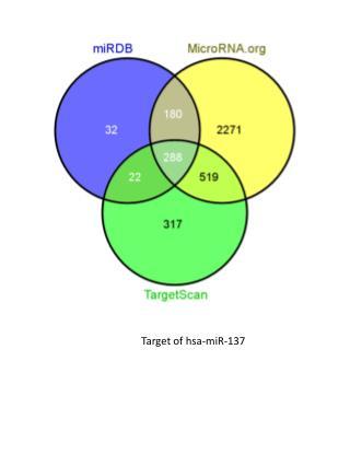 Target of  hsa- miR-137