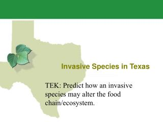 Invasive Species in Texas