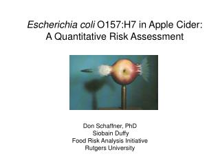 Escherichia coli O157:H7 in Apple Cider:  A Quantitative Risk Assessment
