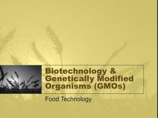 Biotechnology & Genetically Modified Organisms (GMOs)