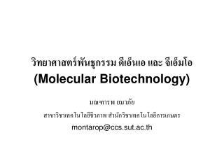 วิทยาศาสตร์พันธุกรรม ดีเอ็นเอ และ จีเอ็มโอ (Molecular Biotechnology)