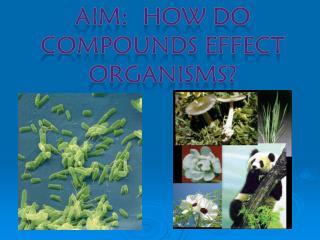 AIM:  How do Compounds effect organisms?