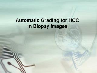 Automatic Grading for HCC  in Biopsy Images