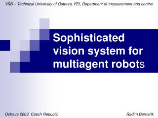 Sophisticated vision system for multiagent robot s