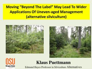 Klaus  Puettmann Edm und Hayes Professor in Silviculture  Alternatives