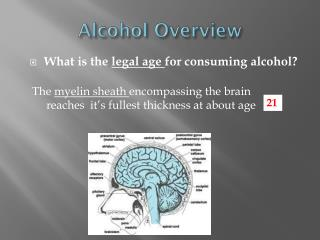 Alcohol Overview